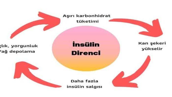 insülin direnci nedir, insülin direnci tedavisi