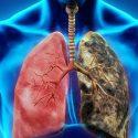 akciğer çalışması, akciğer solunumu, solunum nasıl olur
